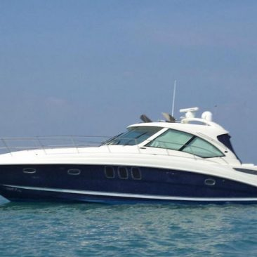 Sea Ray Sundsnver 48